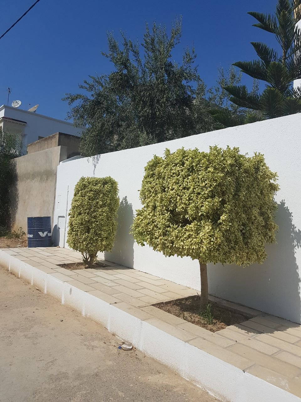 New villa of 600 m2 covered Andalusian type architecture