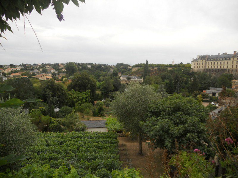 Rental House - Thouars