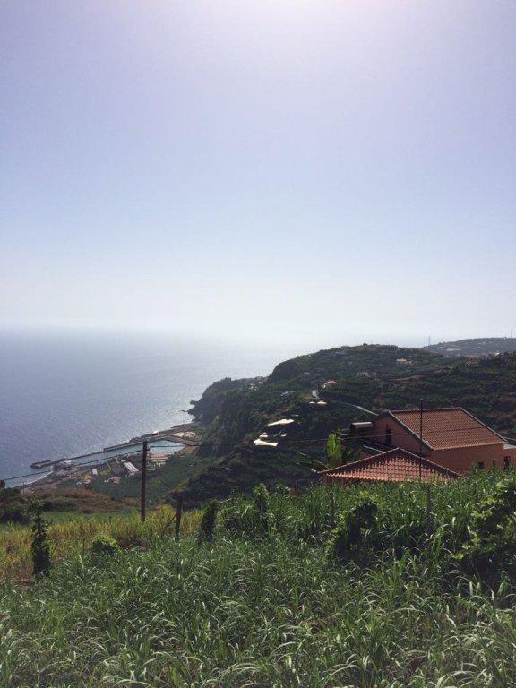 Terreno Construível de 1310 m2 com Vista Fantastica para o Mar – Ribeira Brava