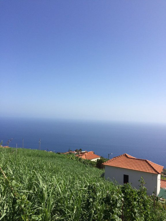 Constructible Land of 1310 m2 with Amazing Sea View – Ribeira Brava