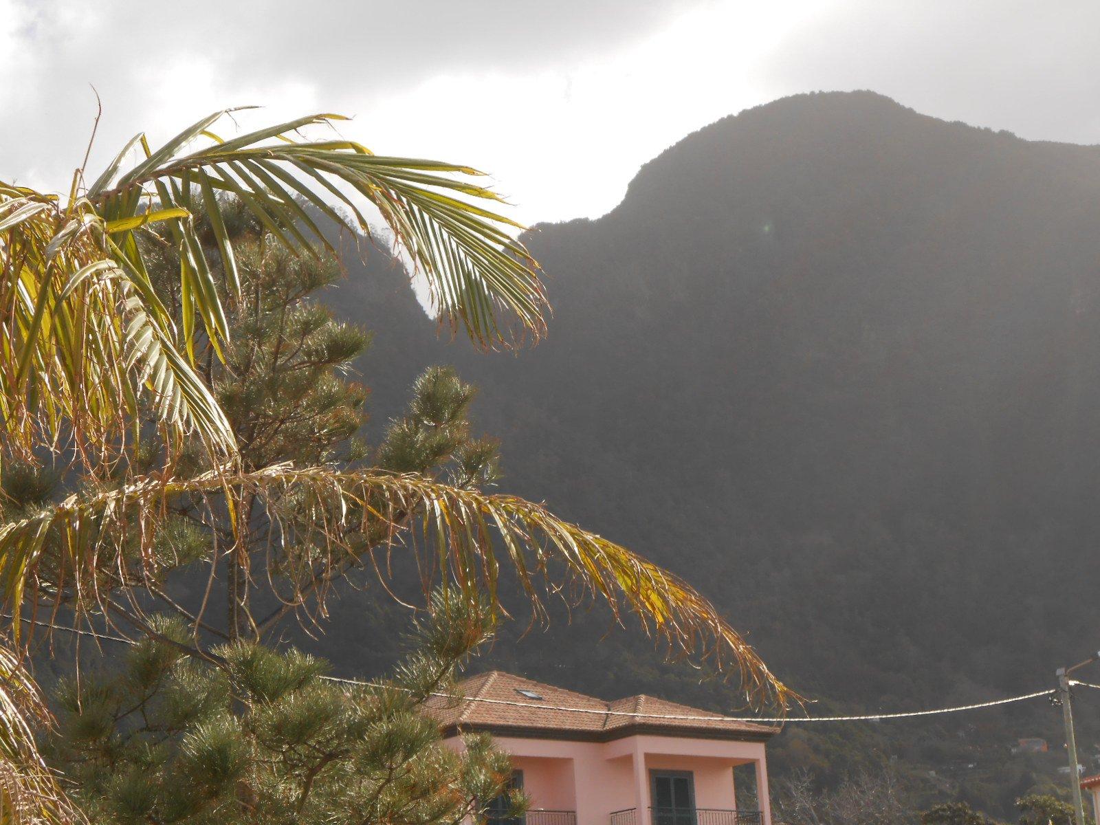 Maison T3 avec Jardin et Vue Splendide sur l'Océan – Ponta Delgada