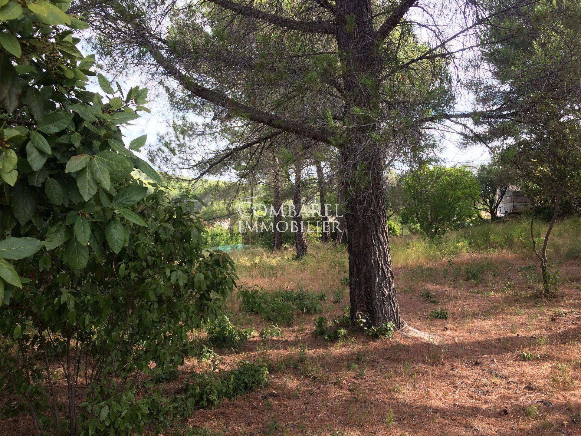 Sale Building land - Ceyreste