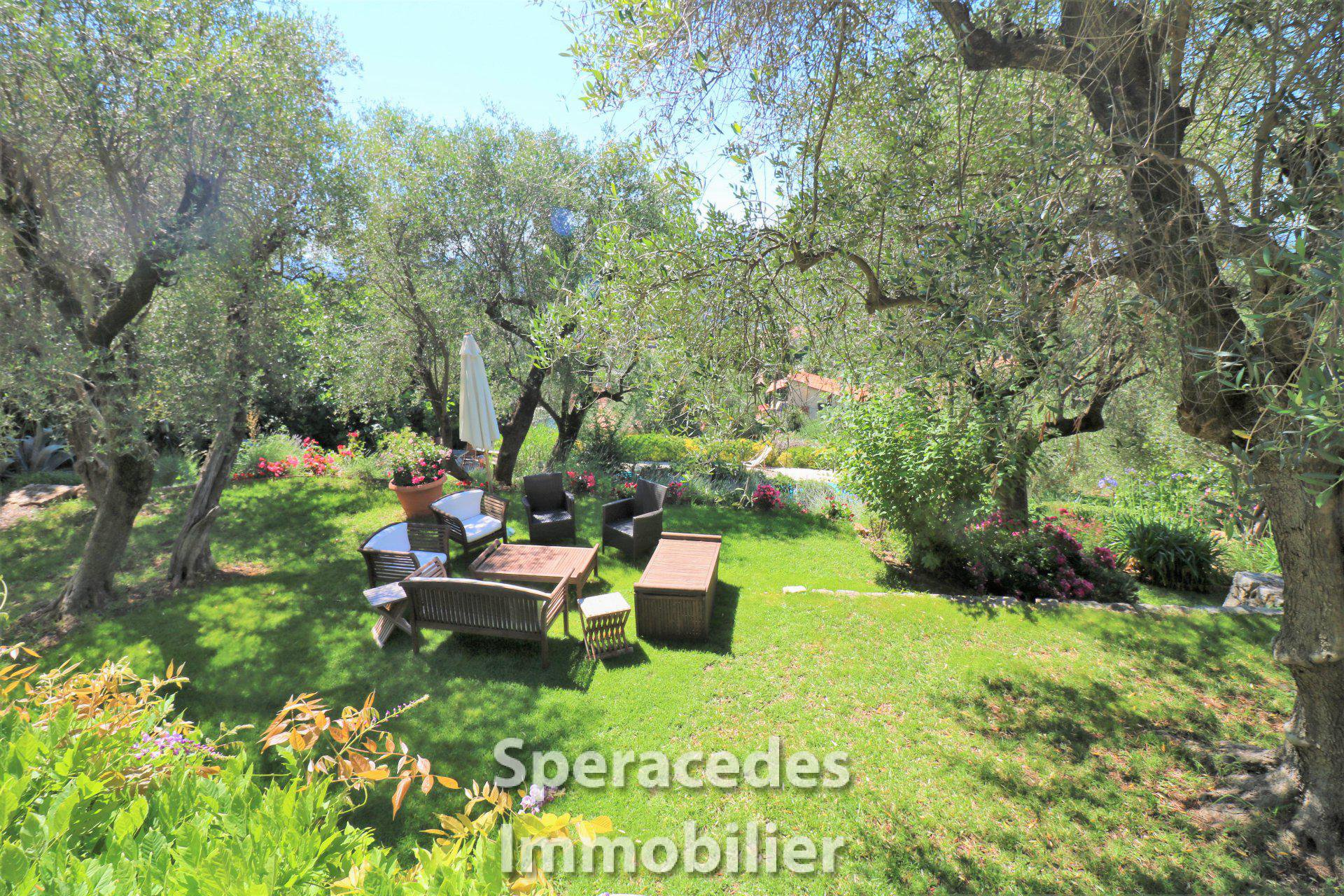 Outside living area under olive trees and amongst the flowers
