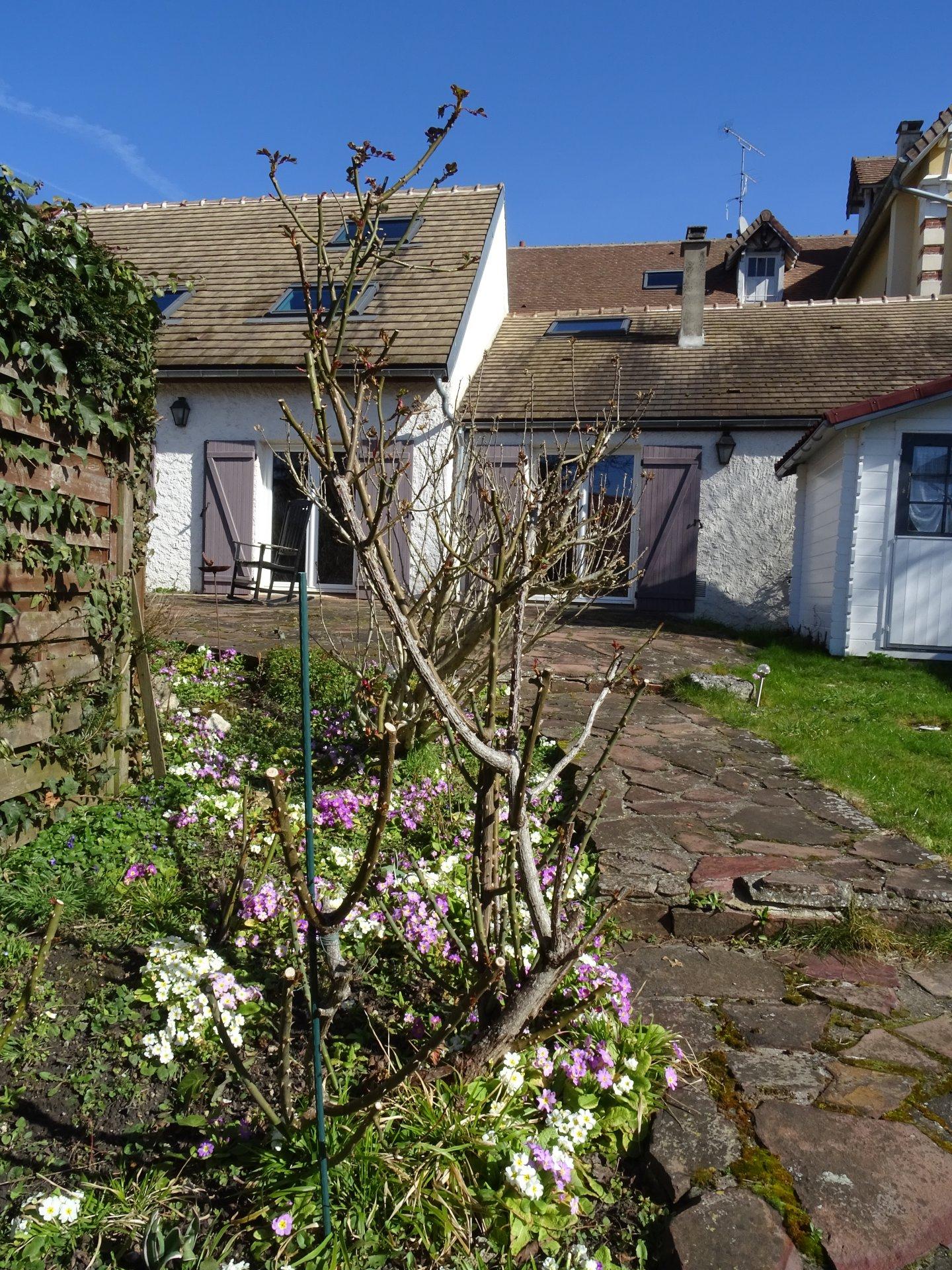 Rental House - Noisy-le-Roi