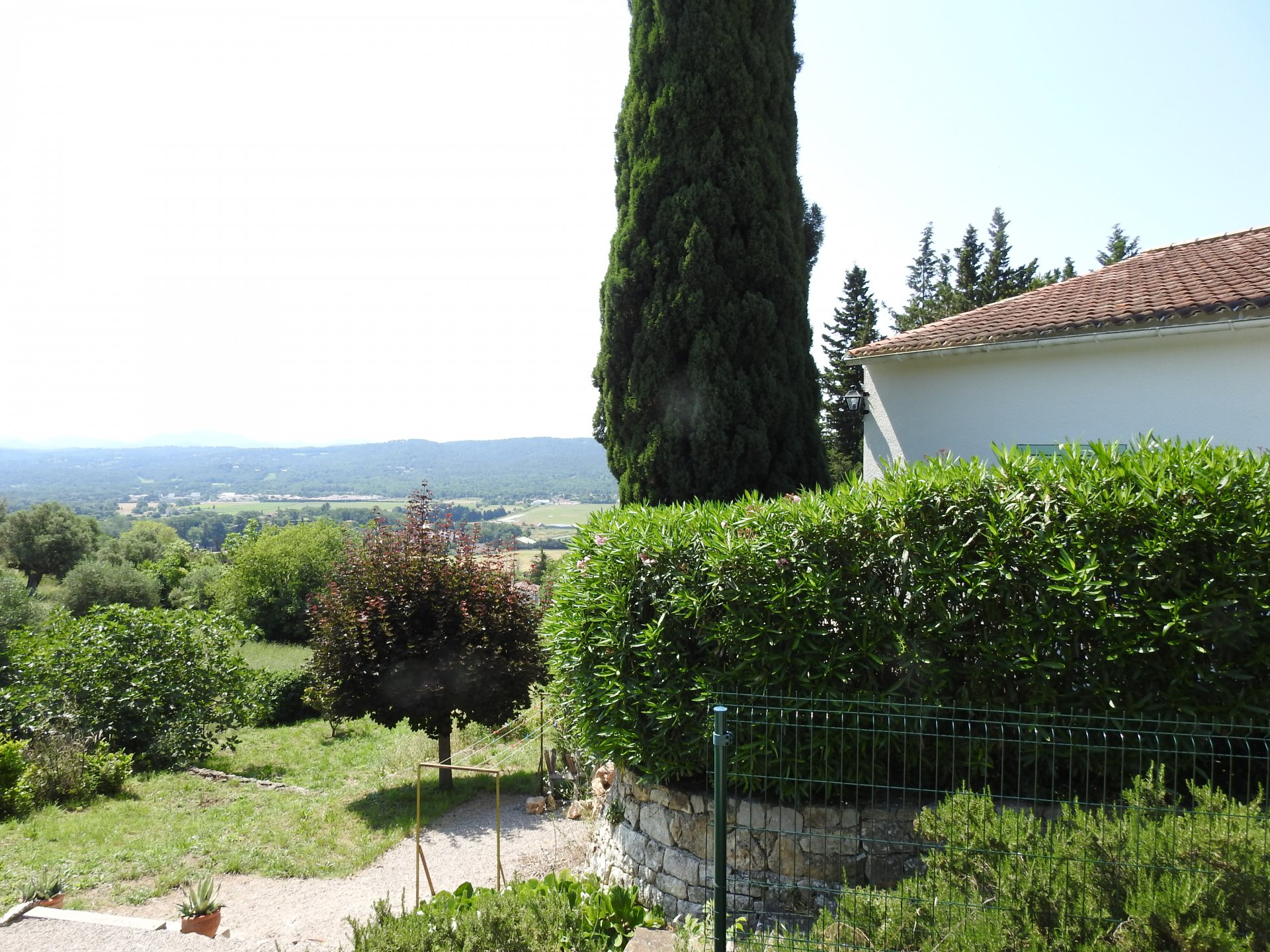 Fayence: house in old center with olive trees