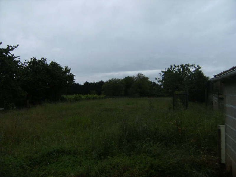 Sale Building land - Montjean