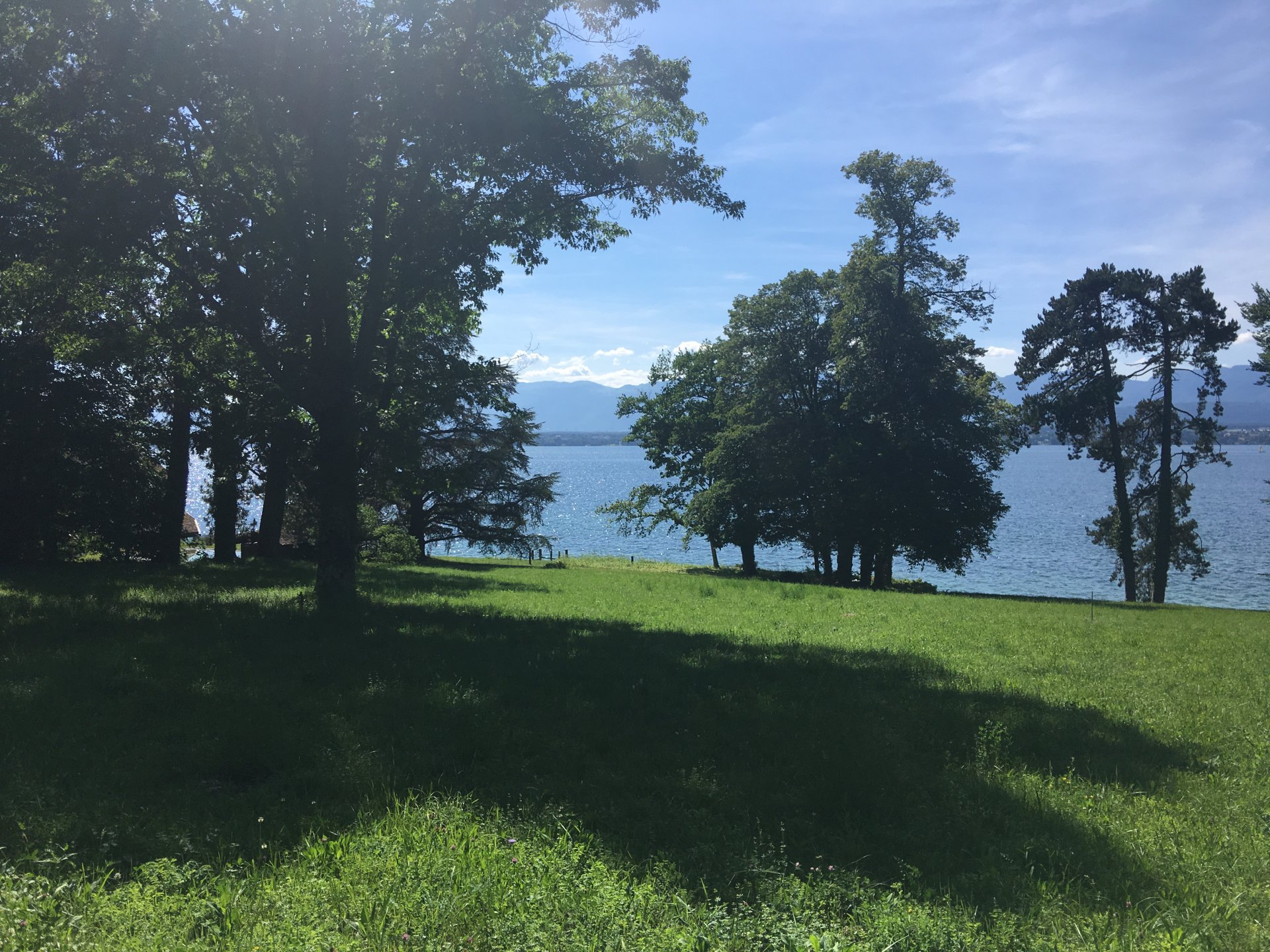 PROPERTY FOOT IN WATER LAKE LEMAN SWITZERLAND