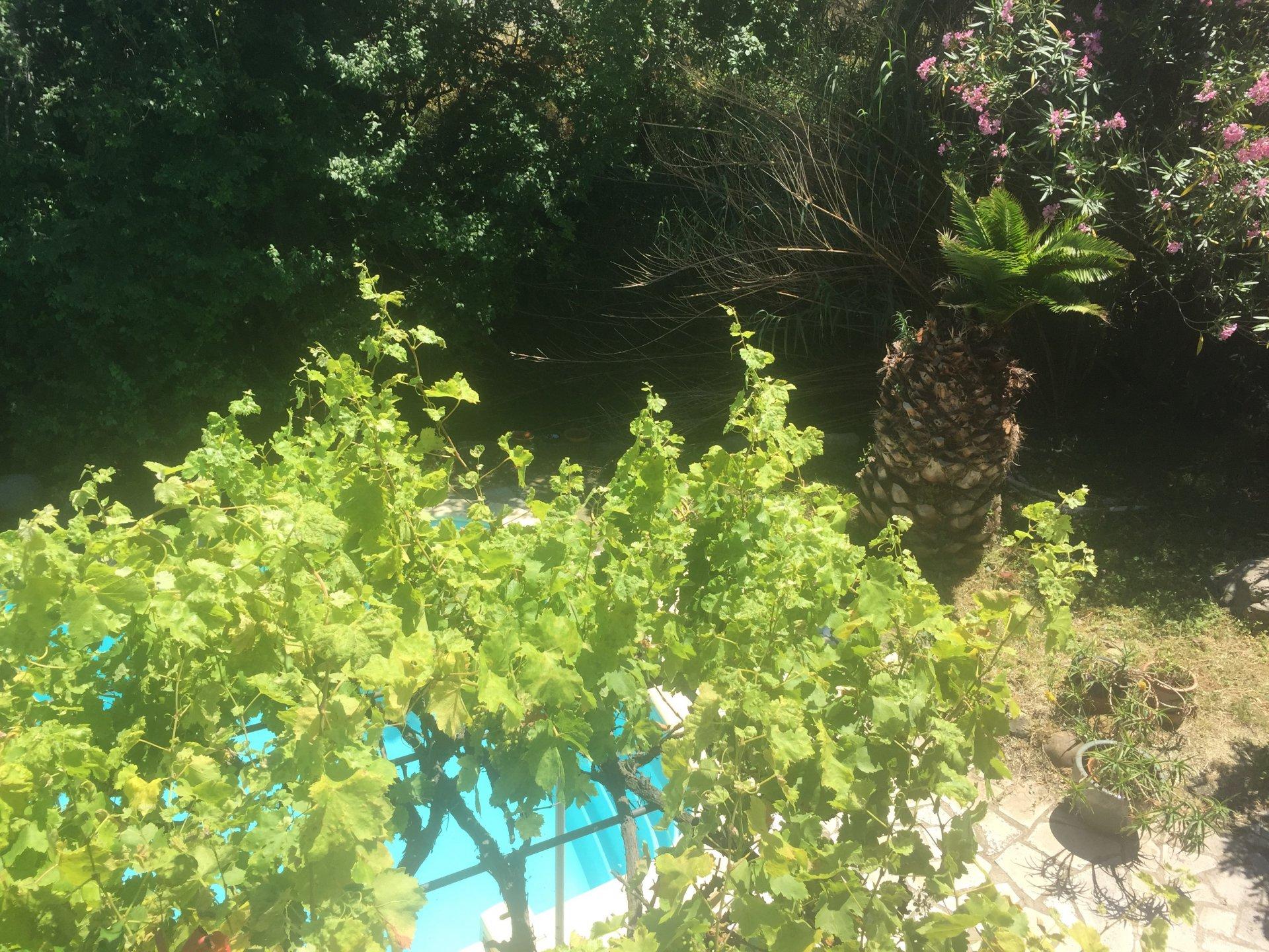 Belle villa de 157m² sur terrain arboré avec sous sol et piscine