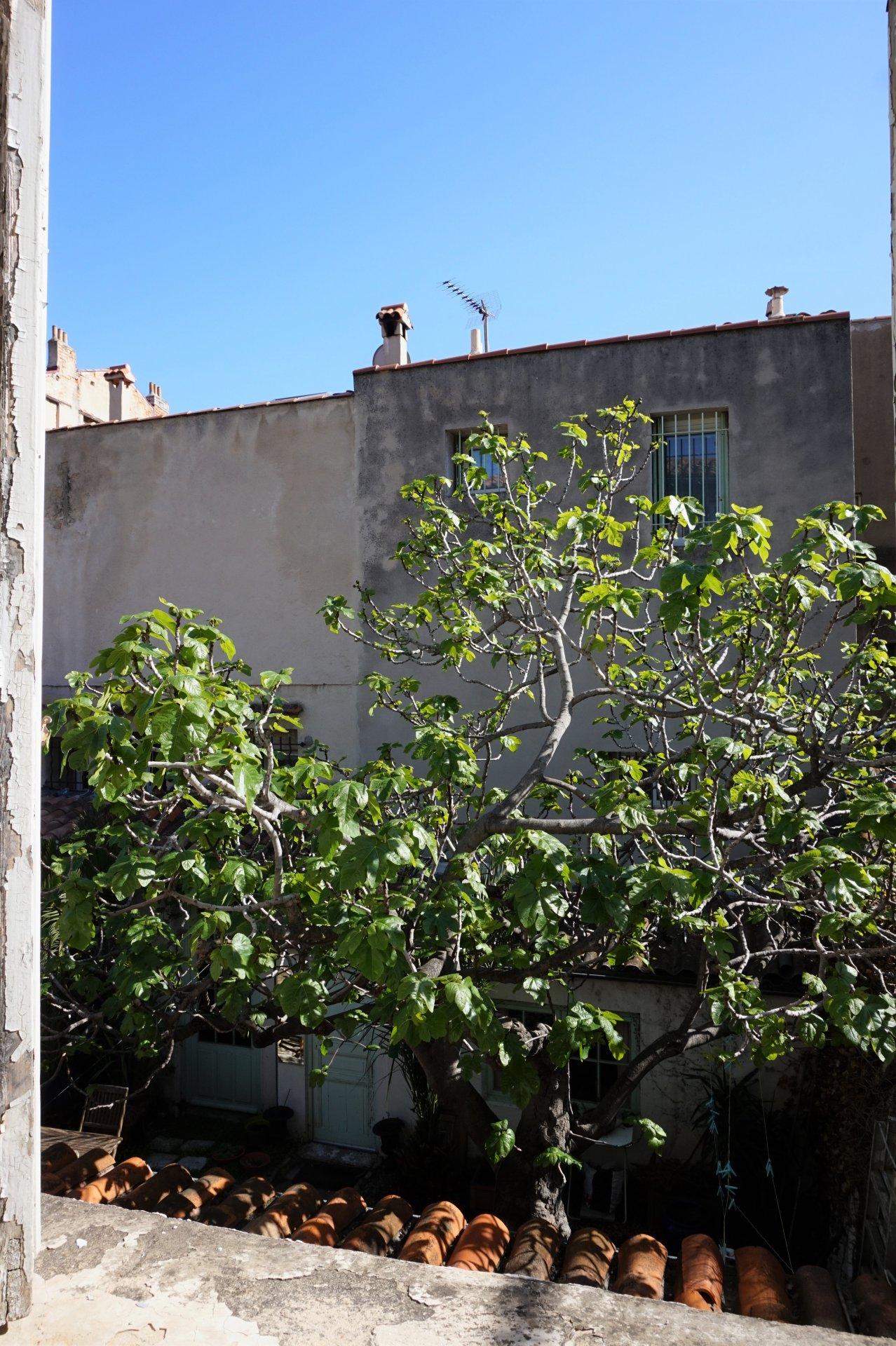 Marseille - Appartement - Vauban / Périer