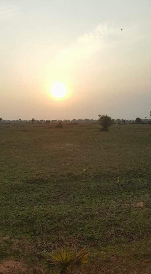 Land for Sale at Seim Reap (8$/m2)