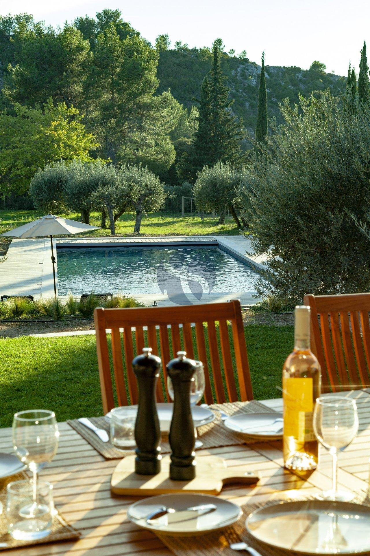 Villa in heart of Alpilles