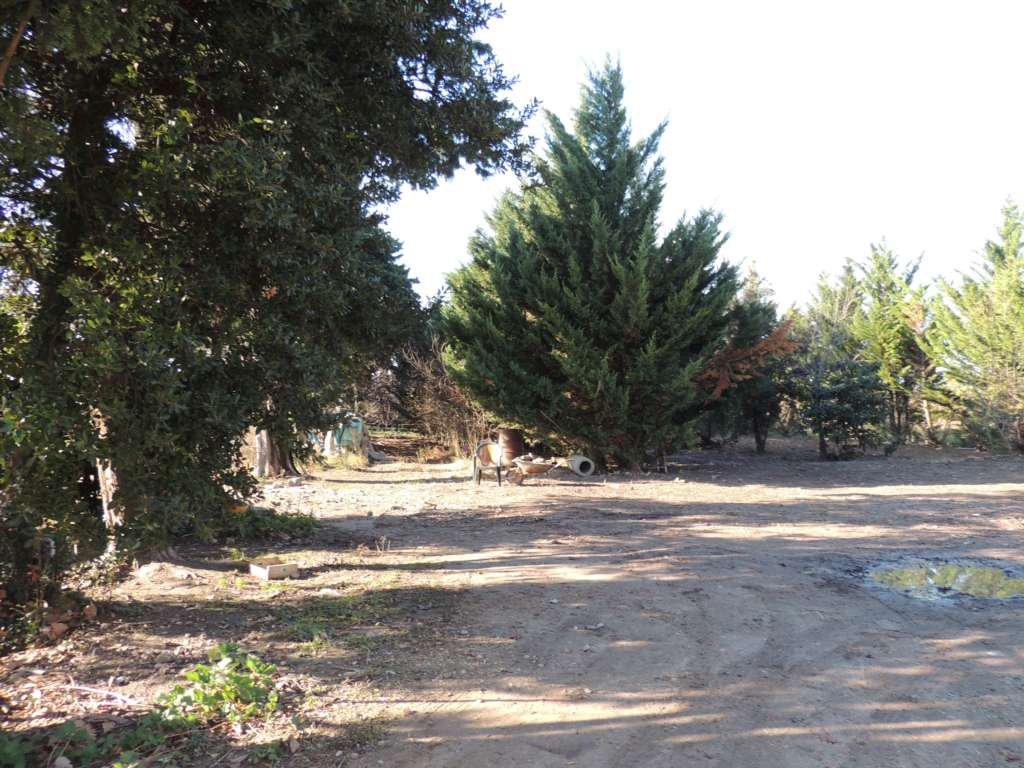Beaucaire: Mas Mitoyen Entouré De 4623m² De Terres, Avec Remises Et Dépendances
