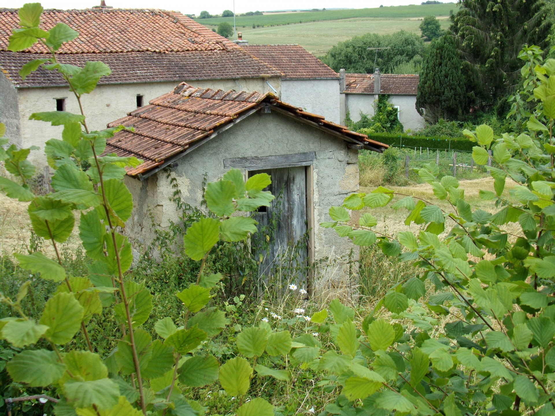 Farm with lots of land for sale in France - Haute Marne