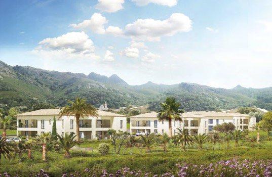 Development Apartment - Calenzana