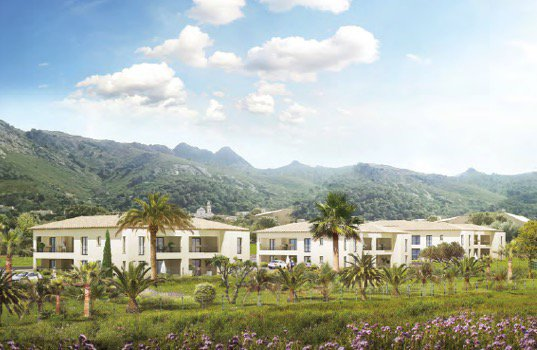 Development Apartment - Calvi