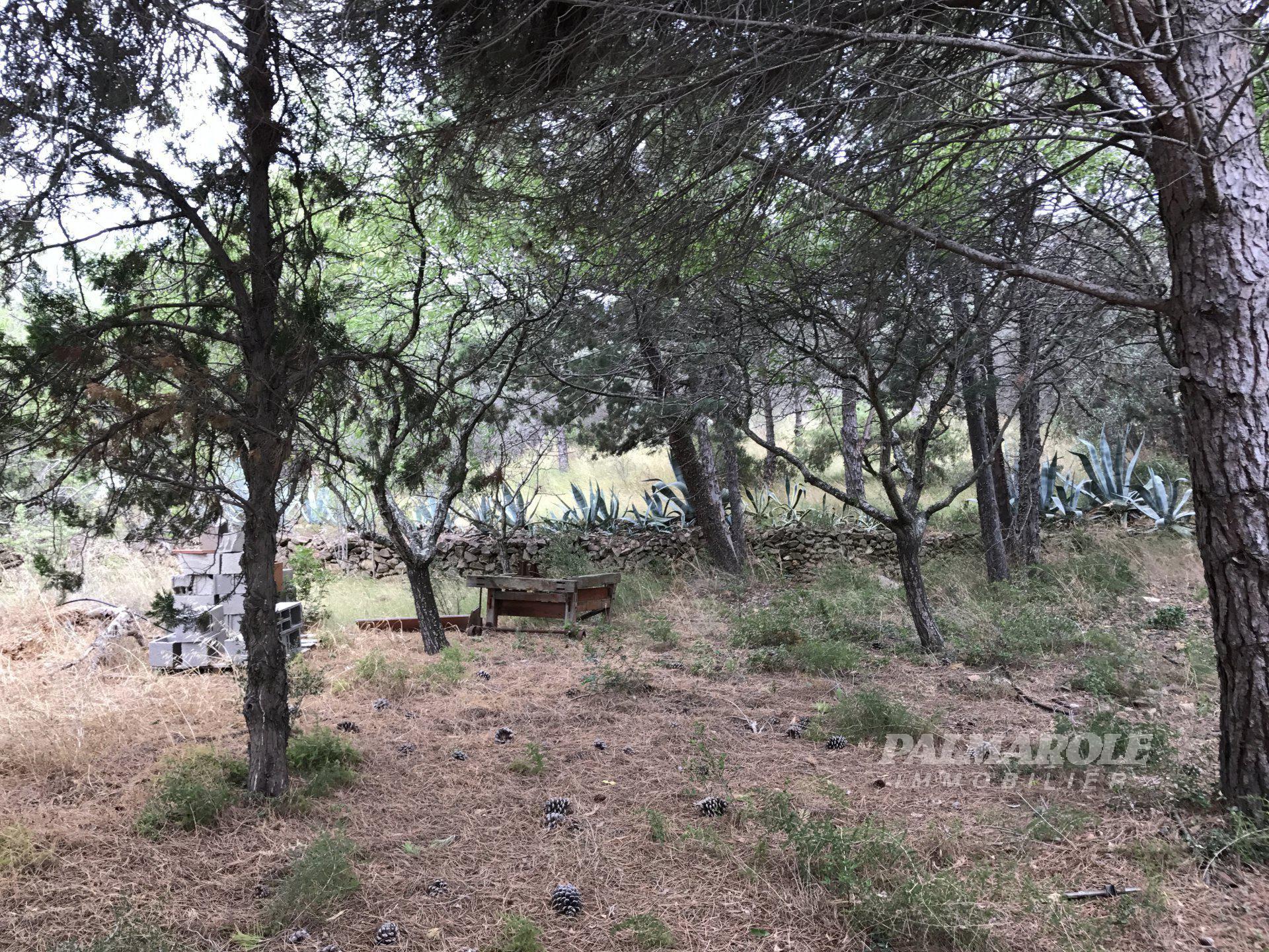 SALSES terrain 2100m2 environnement privilégié hors lotissement