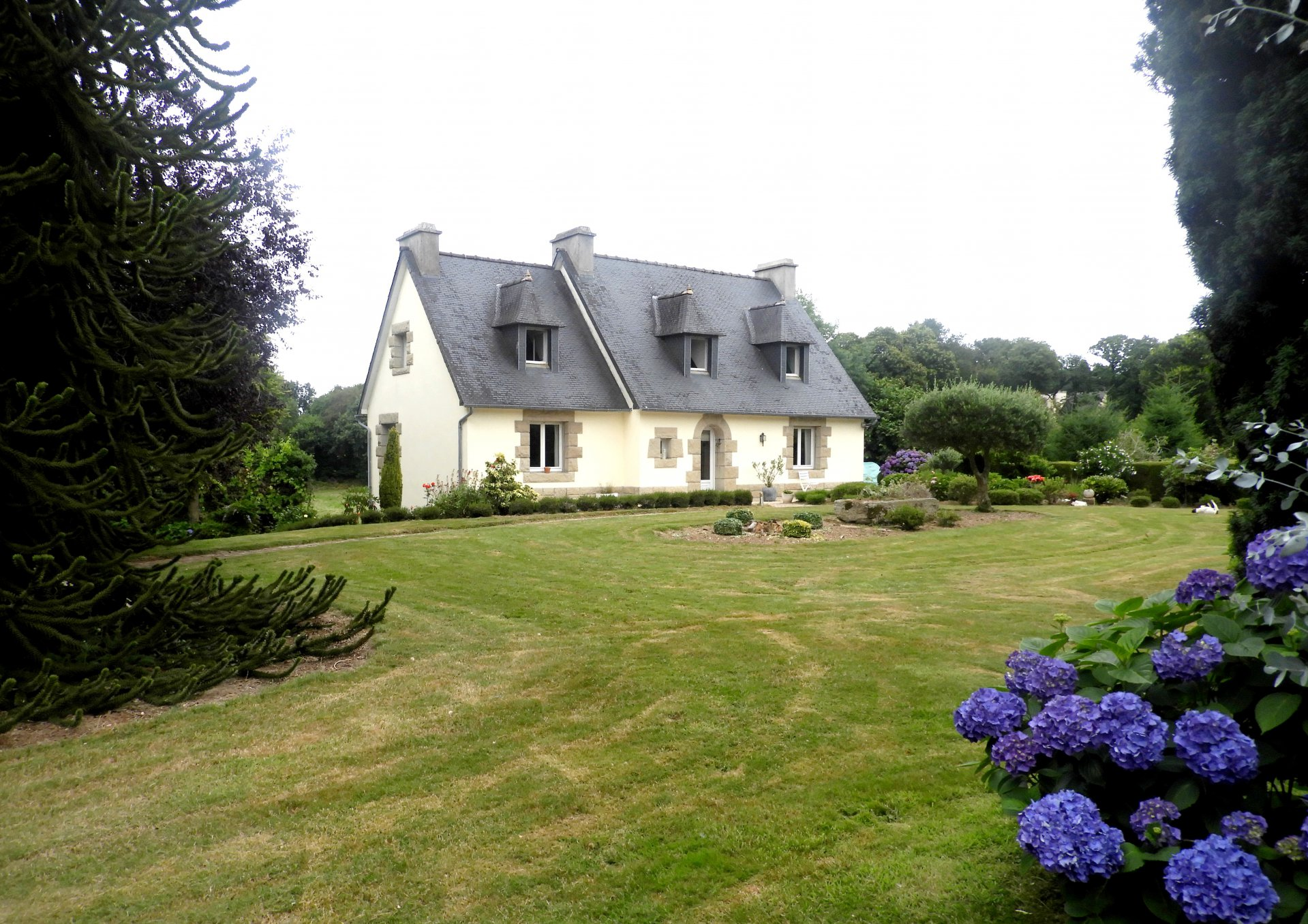 Sale House - Treffrin