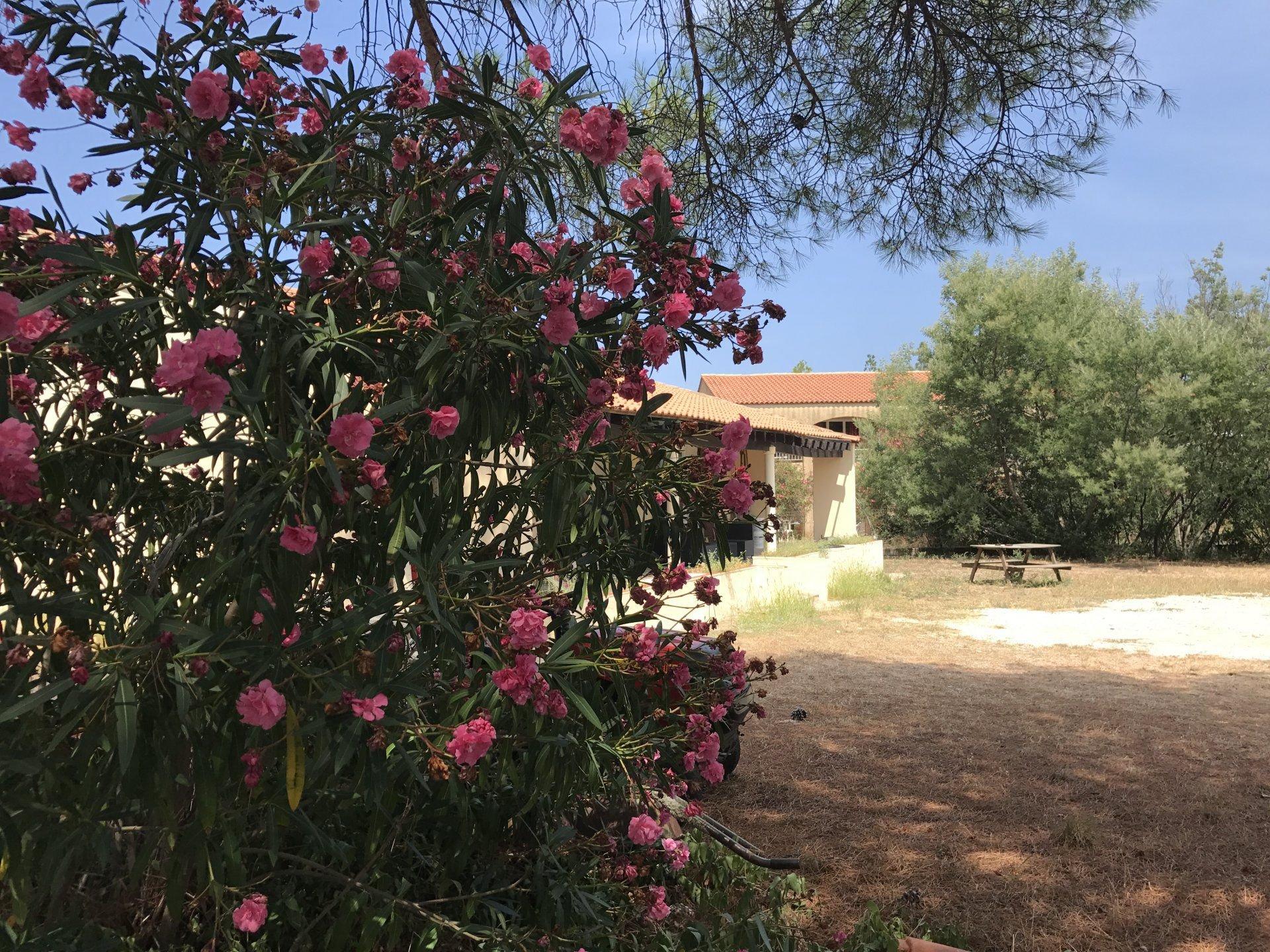 Villa T4+ CALVI de plain-pied, avec jardin et terrasse .