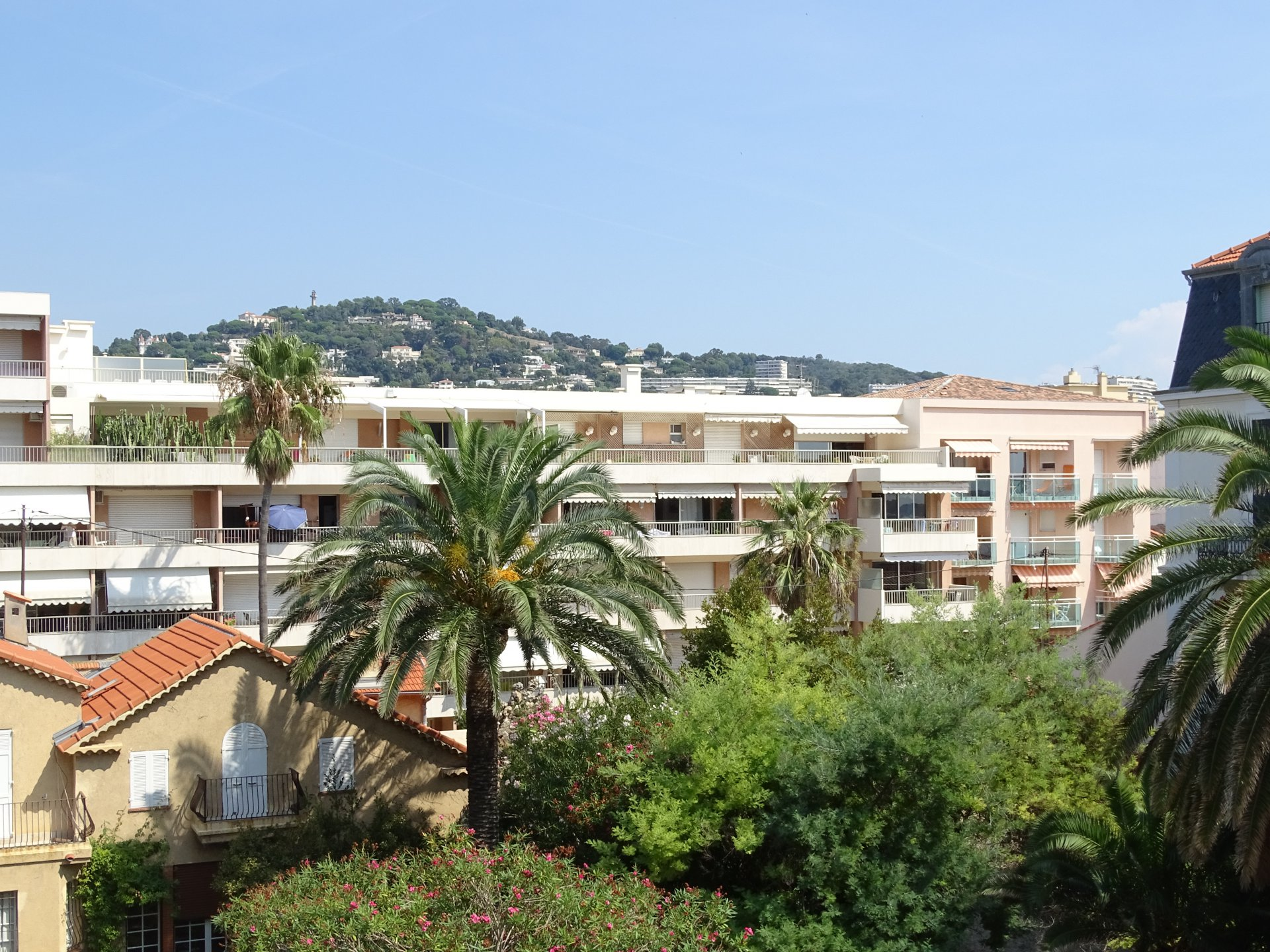 Cannes Palm Beach sea view