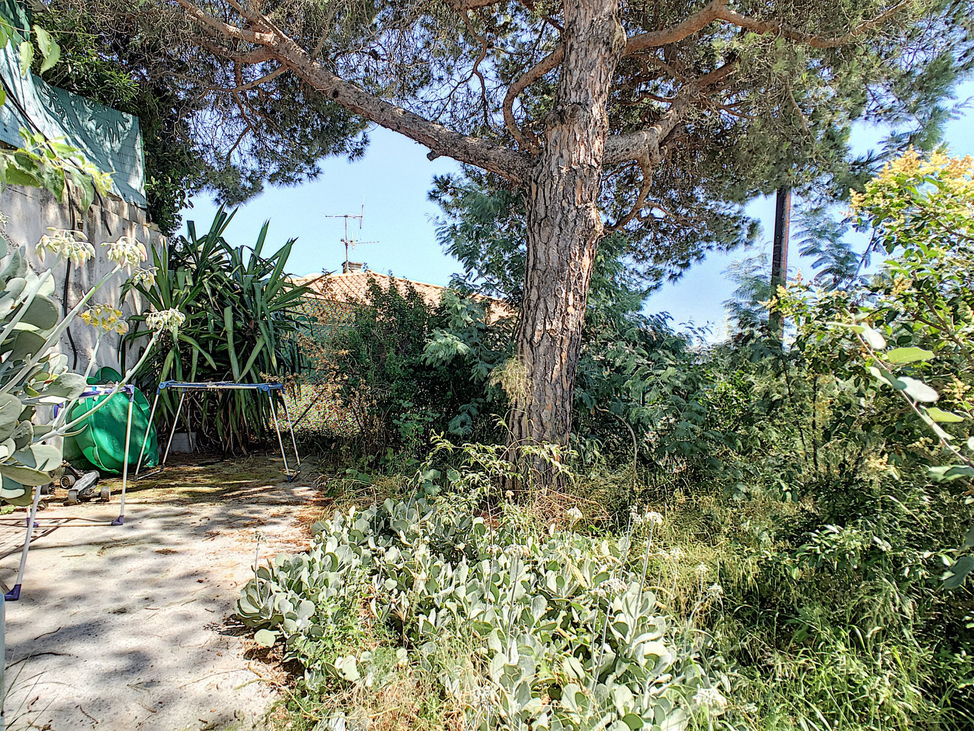 Cannes - Croix des Gardes: Flat on Villa bottom with sea view