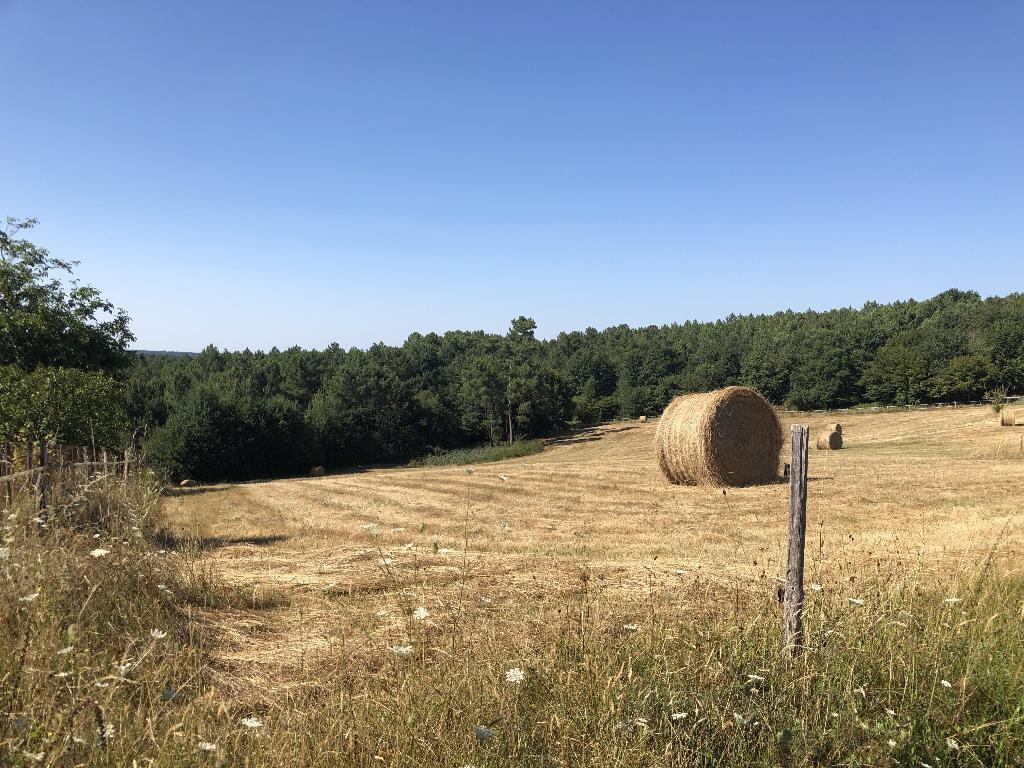 Terrain à bâtir en campagne