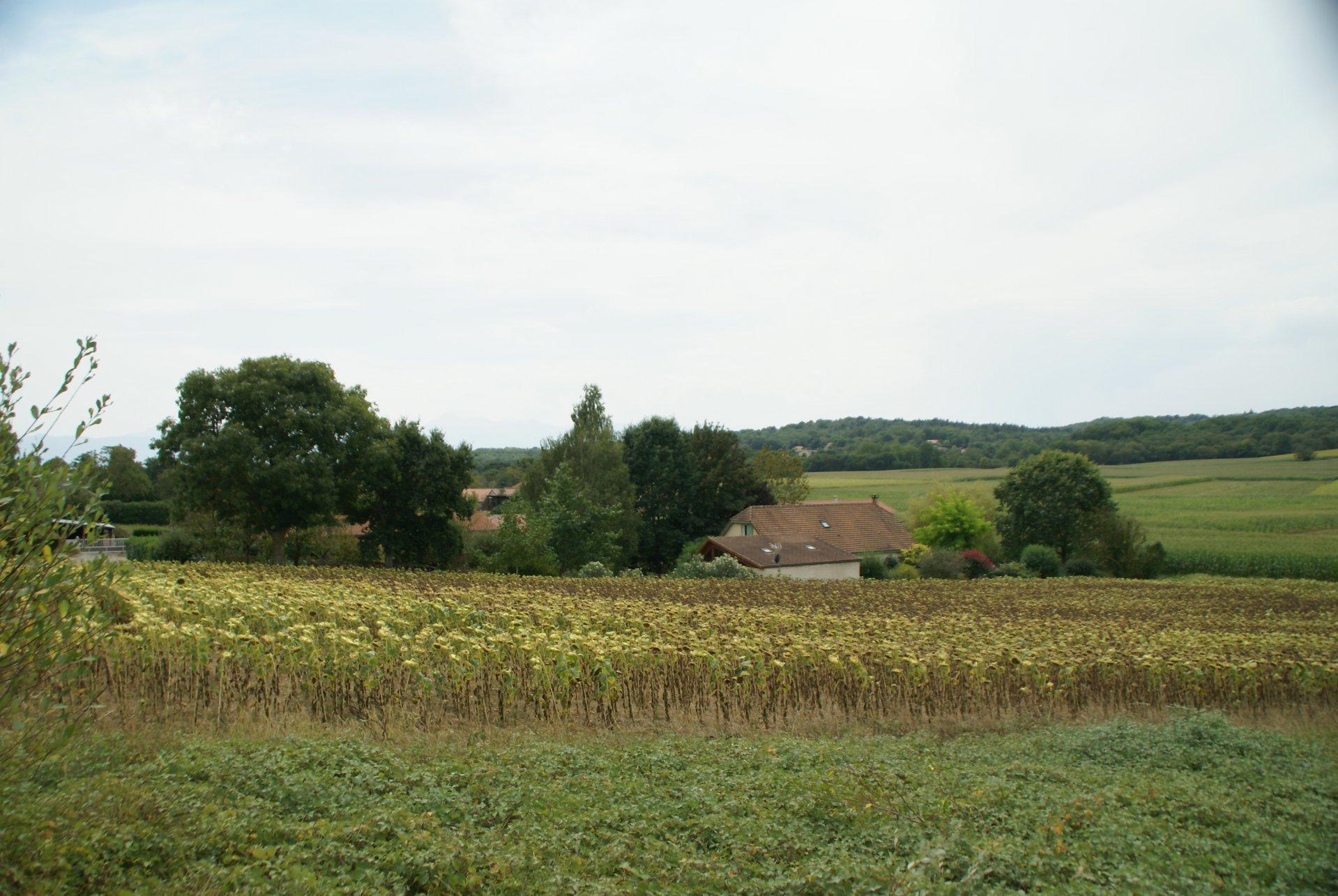 KOOPJE Bouwterrein van 2650 m² met vergunning in Marseillan (Haute-Pyreneeën)