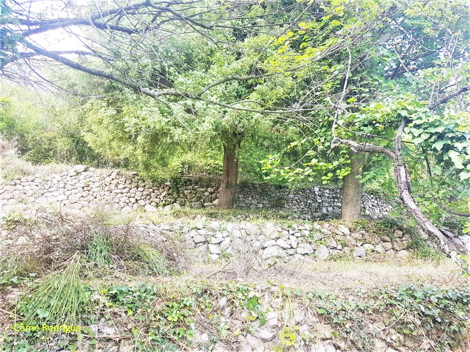 Vendita Terreno edificabile - Castillon