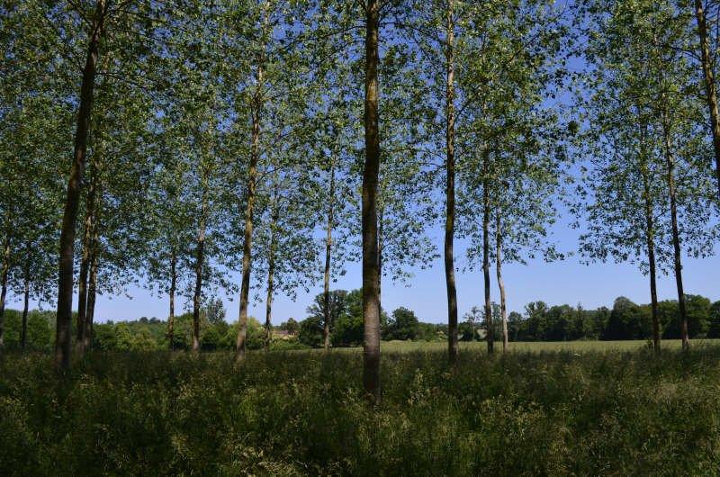 Vente Terrain constructible - St Denis Sur Sarthon