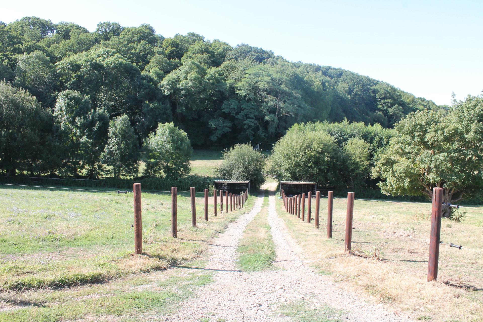 propriété équestre sur 7 HA bordure forêt