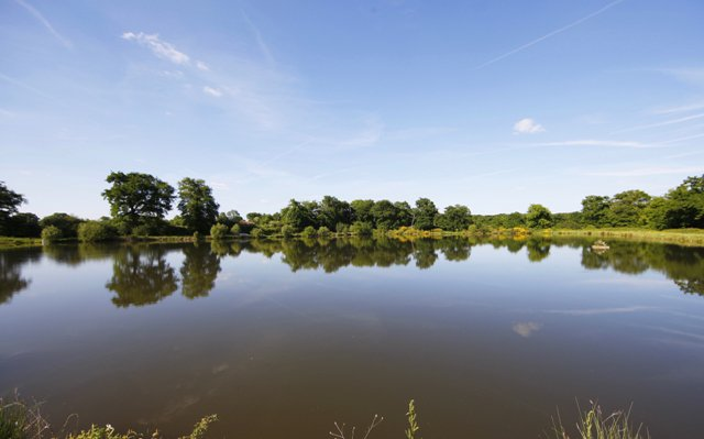 4 Outstanding Properties on 11 acres of lakes near Confolens