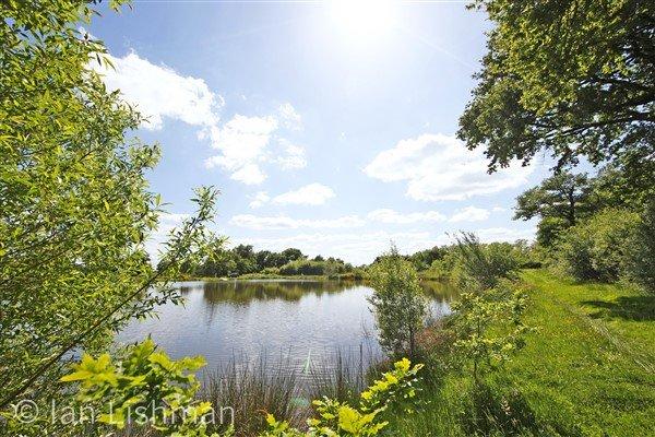 4 maisons avec lacs à vendre près de Confolens - Vienne