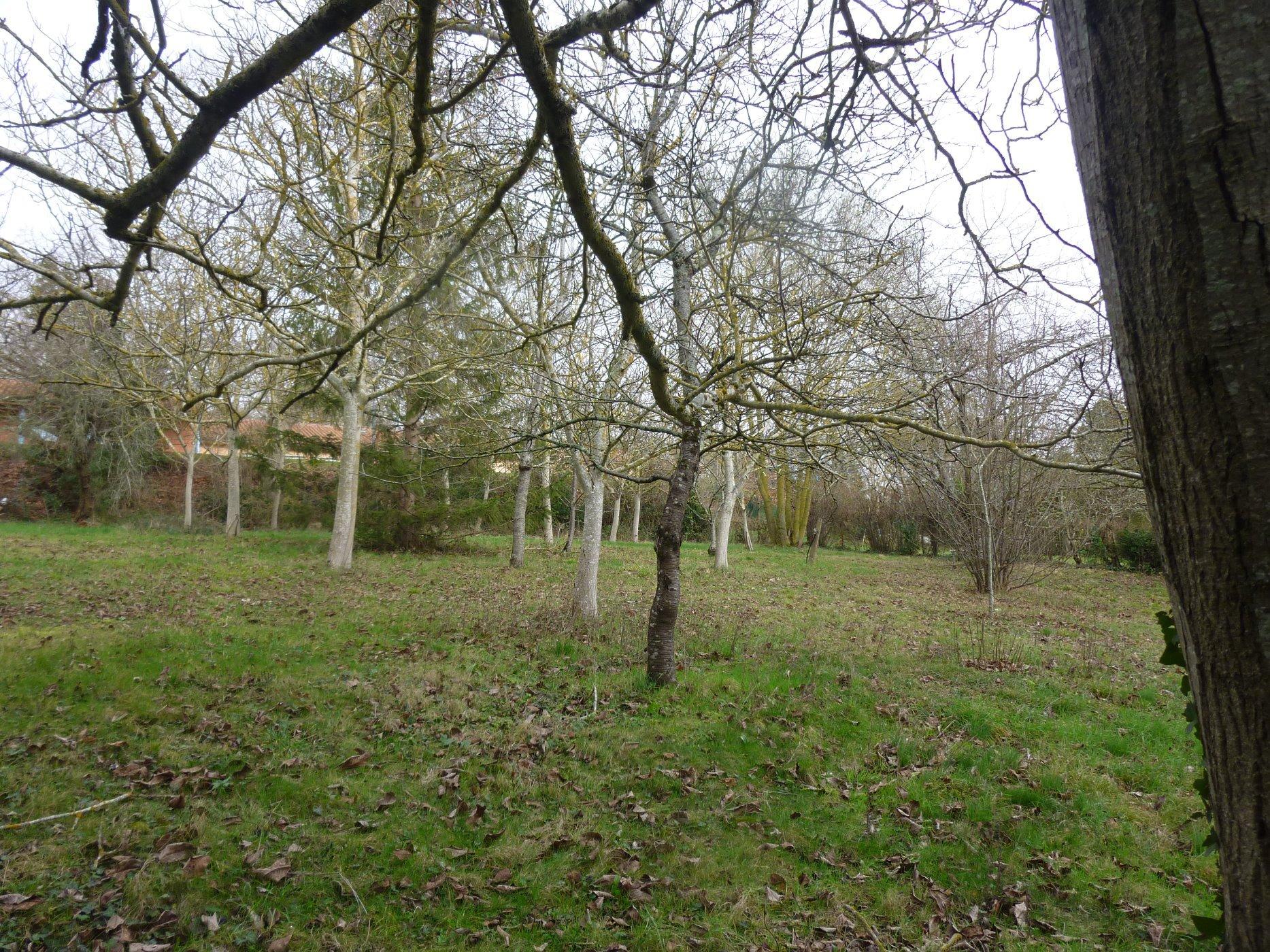 Land (1273 m²)