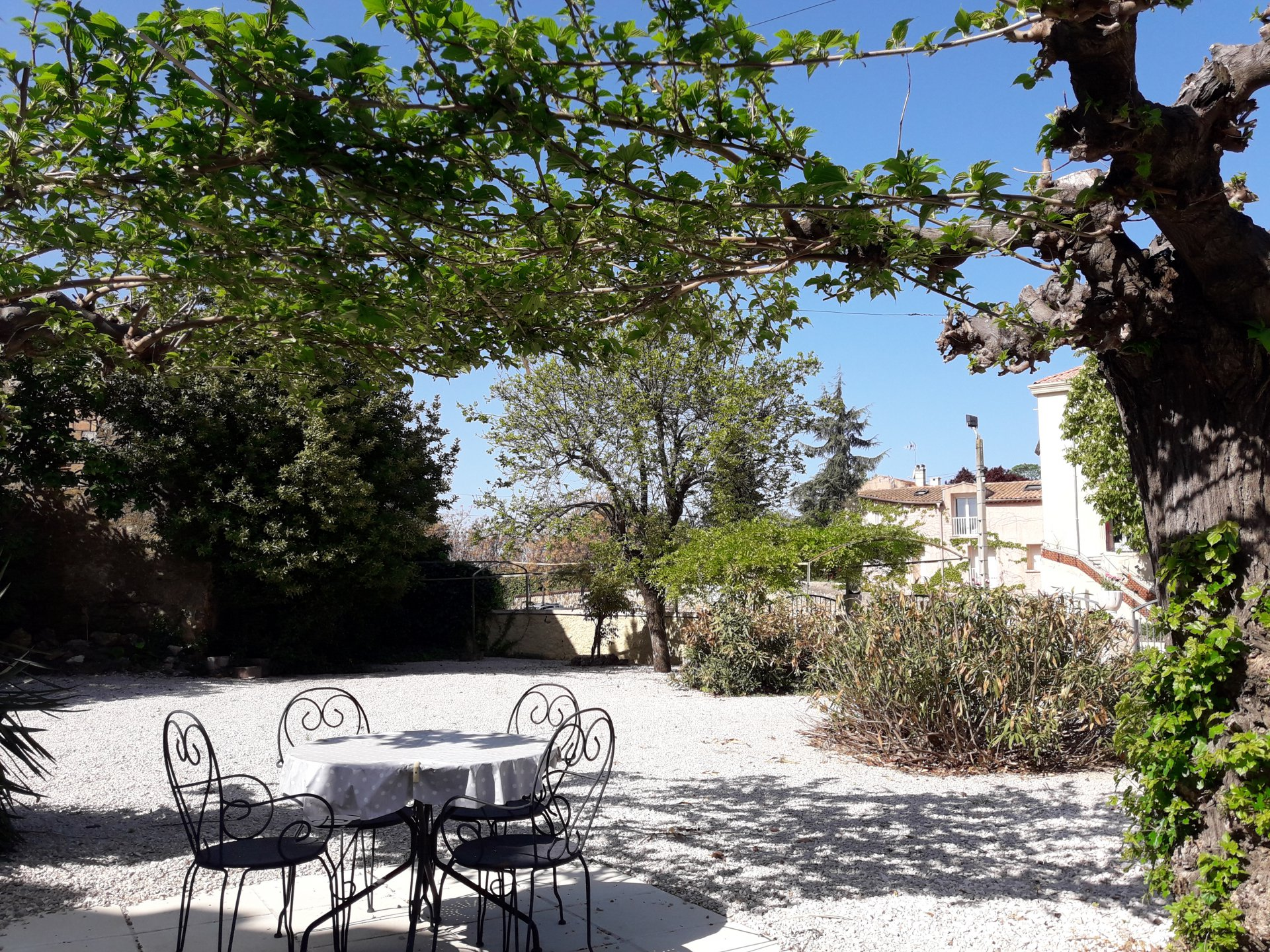 Magnifique vigneronne avec jardin et piscine