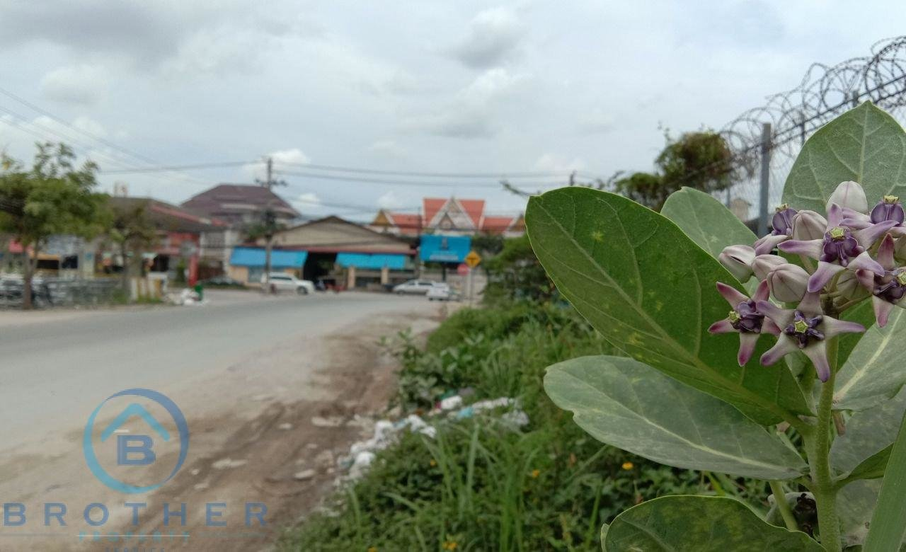 Urgent Land sale with good price