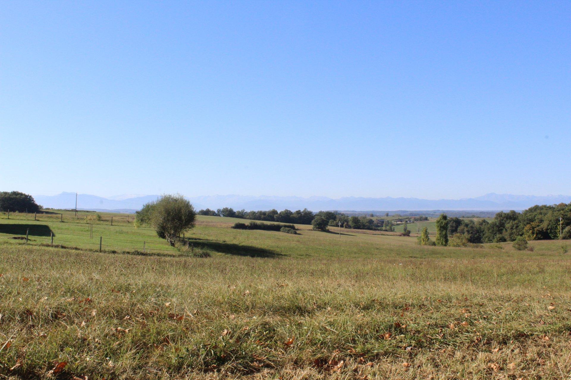 Proche de Ciadoux, terrain de 7386 m² à bâtir avec vue Pyrénées