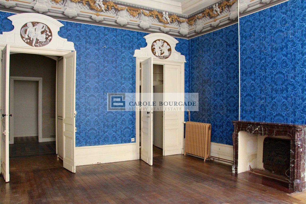 Exceptionnal Mansion -Bordeaux -Jardin public
