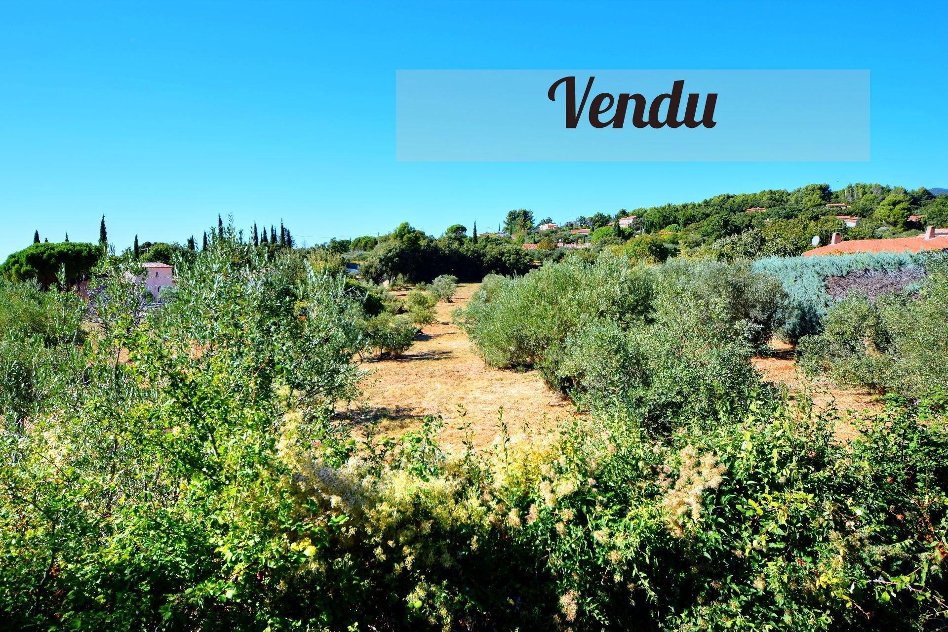 Achat Terrain constructible Aups Provence