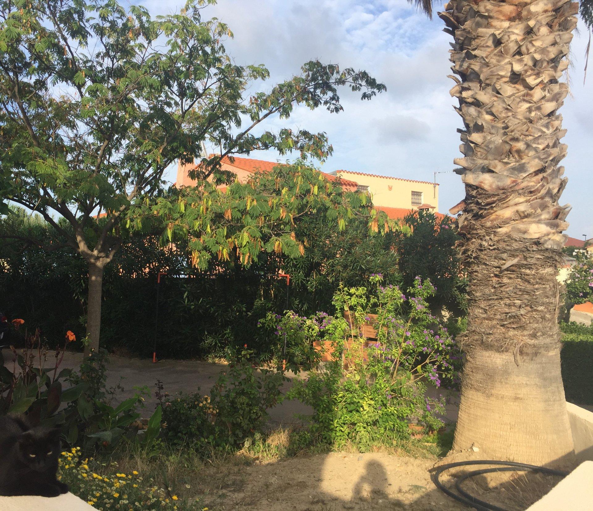 Villa avec piscine sur 768m² de terrain arboré