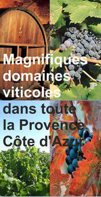 Продажа Винодельческое поместье - Draguignan