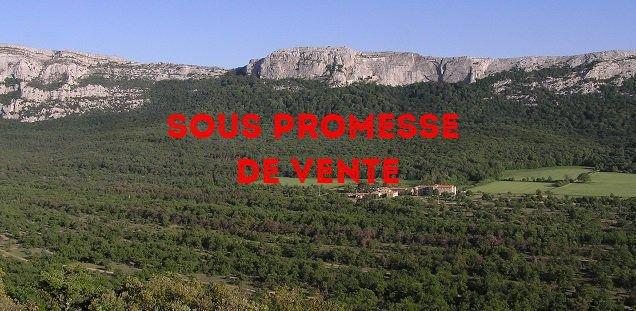 Terrain 2900 m² aux Adrets vue panoramique