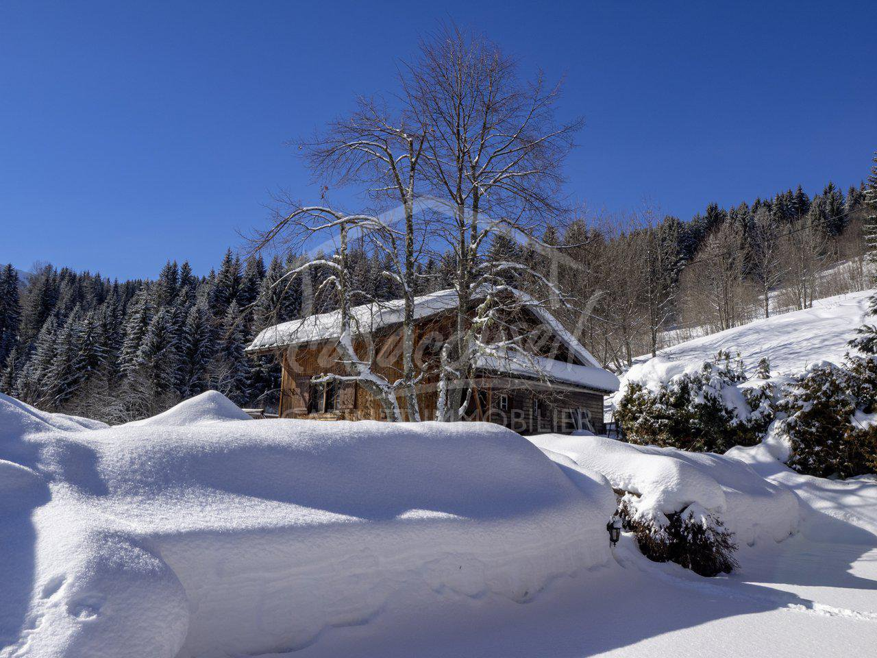 Le Bettex- property next to the slopes facing Mt Blanc