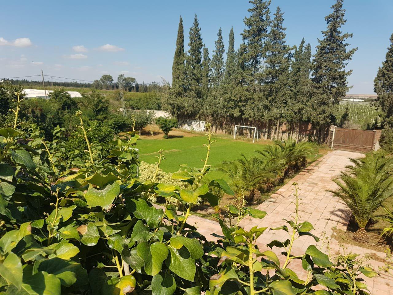 Propriété viticole avec piscine