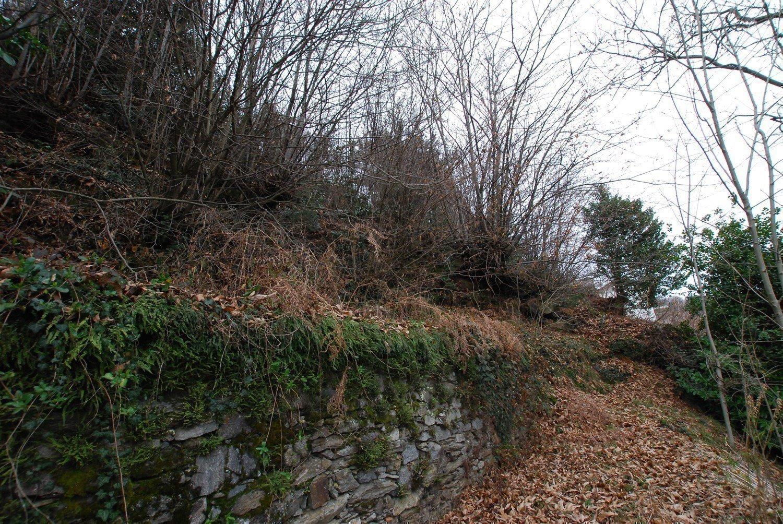 Vendita rustico da ristrutturare sulla collina di Stresa - terreno
