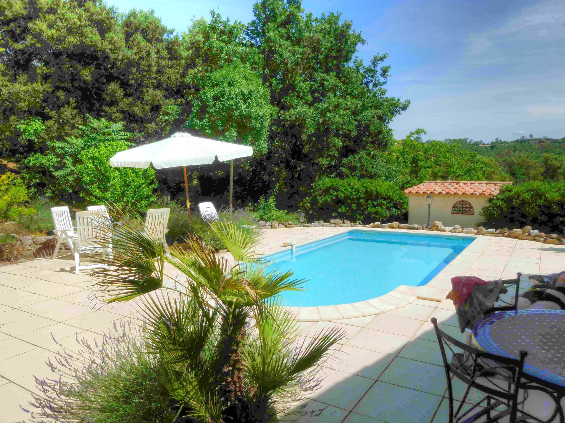 Charming Provencal house with pool and view