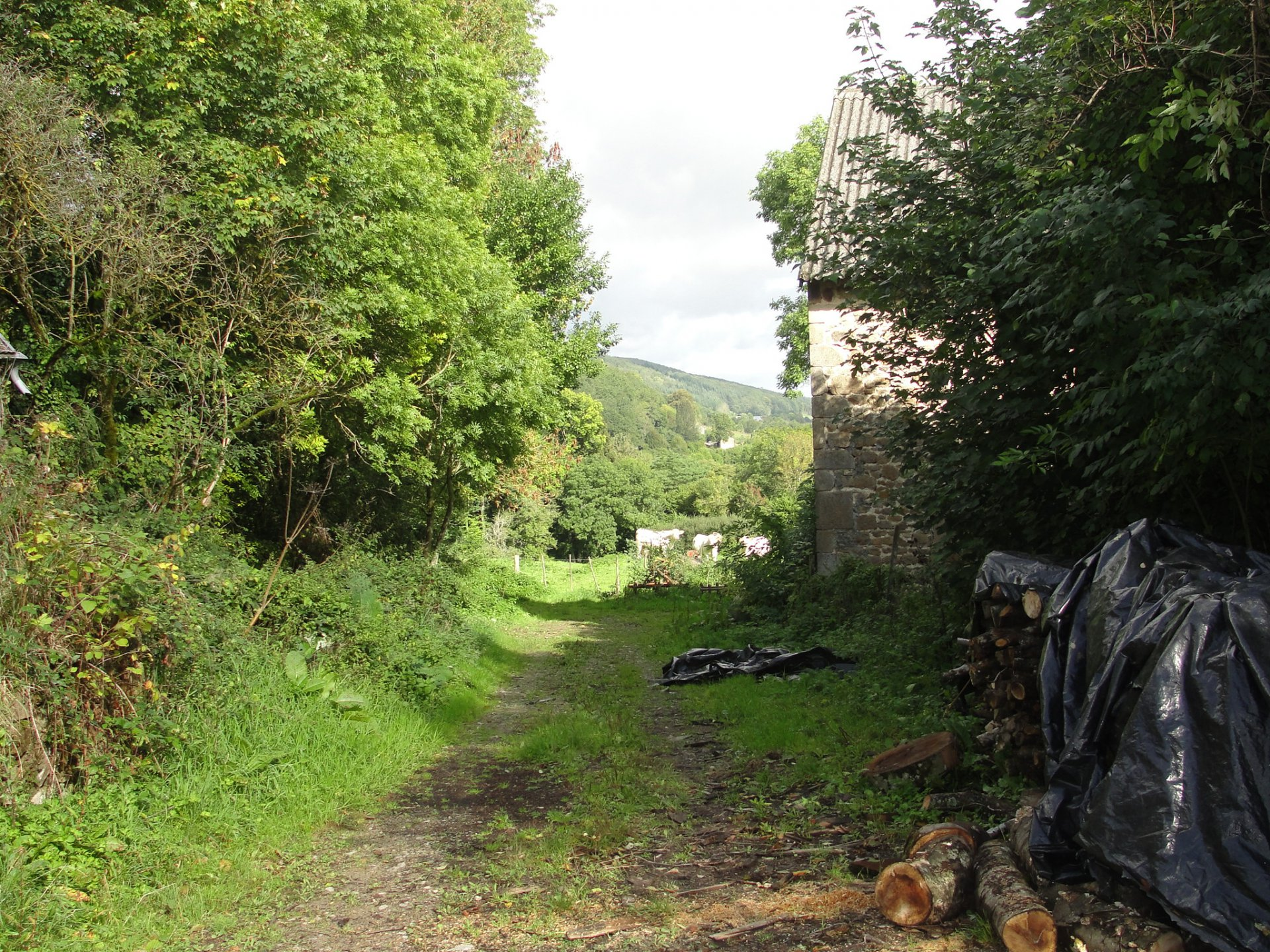 For sale, Puy de Dôme to renovate stone house with barn.