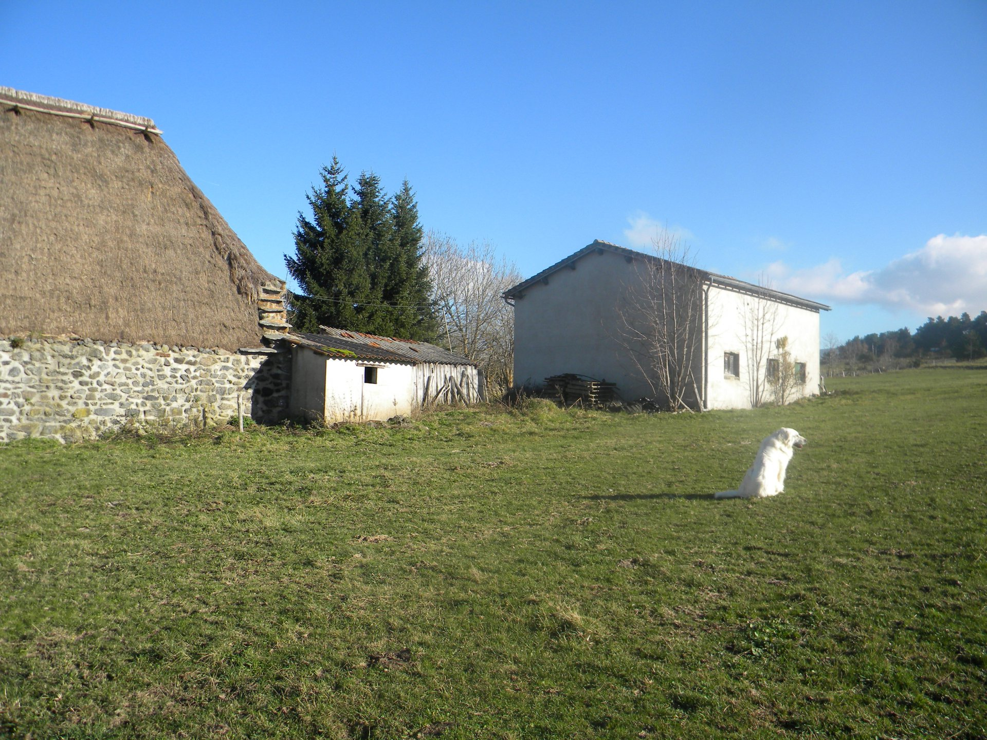 Sale Cottage - Moudeyres