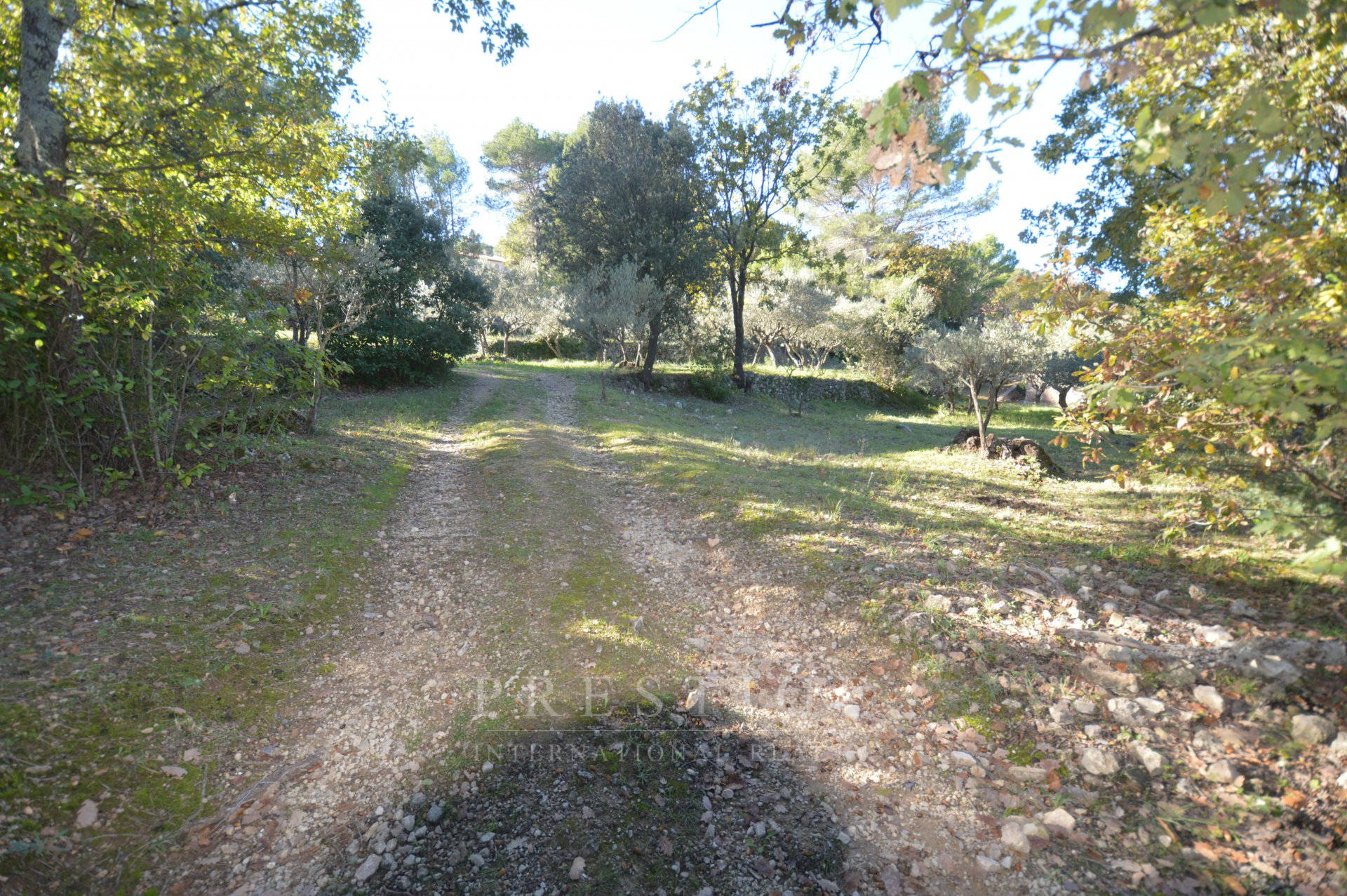 Cotignac, land 1535sqm
