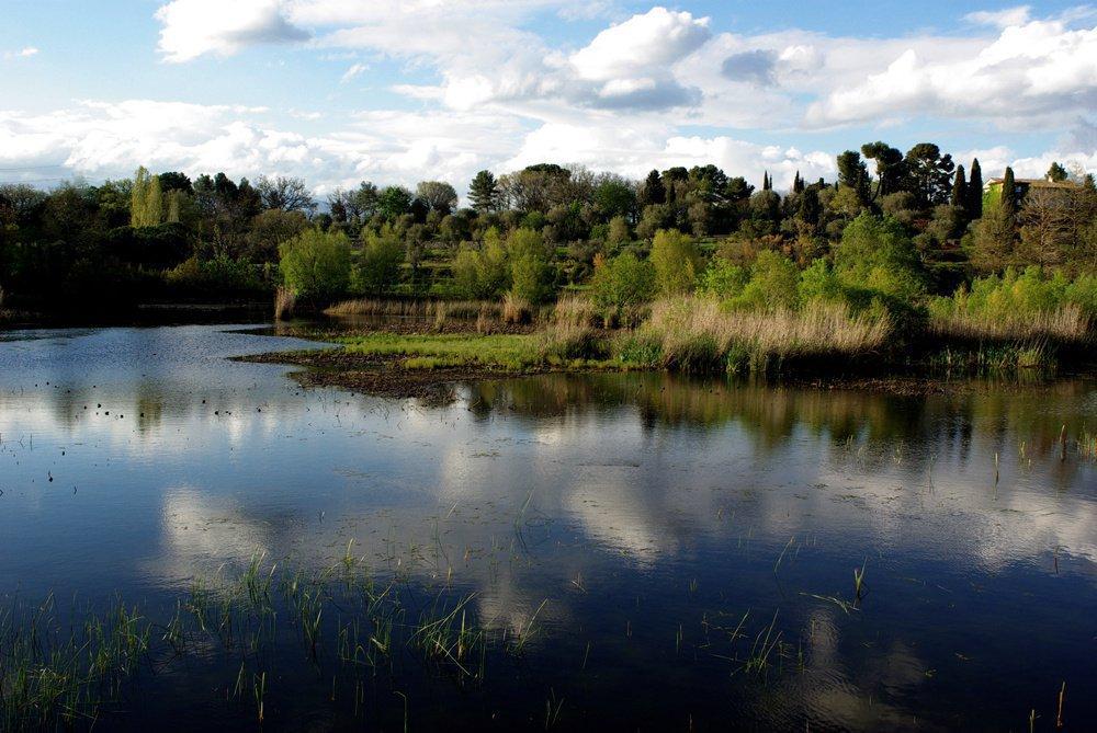 MOUGINS - Région PACA - vente 3 pièces - résidence avec piscine - proche Technopôle Sophia