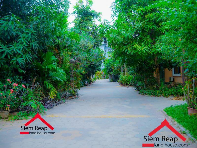 ជួល អគារស្នាក់នៅរូម Siem Reap