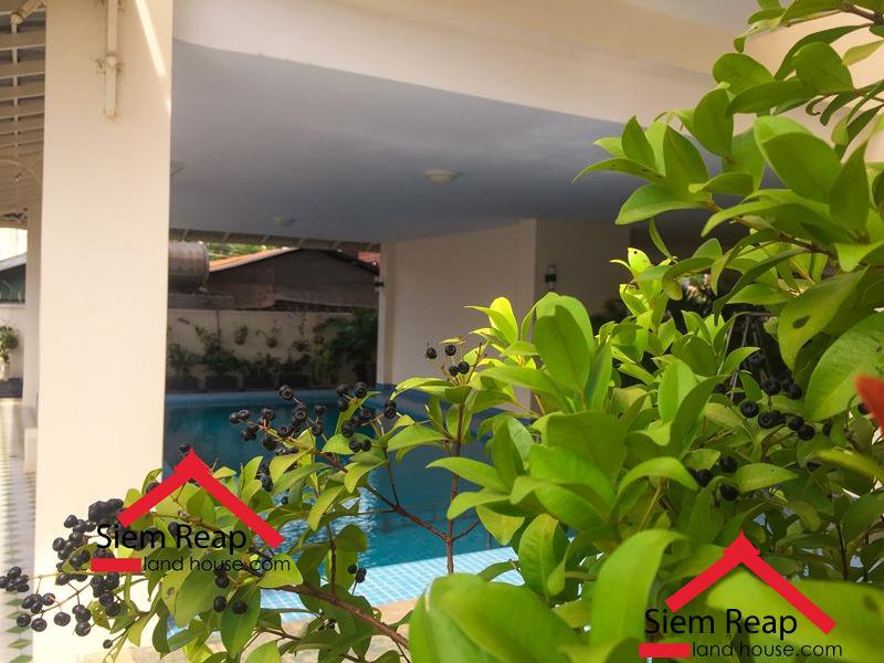 1 bedroom apartment a long national road 6A airport for rent $450 per month ID A-159